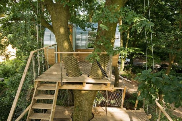 Rounded shape treehouse (4)