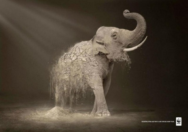 Ad Campaigns for endangered species (4)