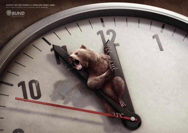 Ad Campaigns for endangered species (2)