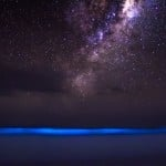 Bioluminescence and Galactic Glow