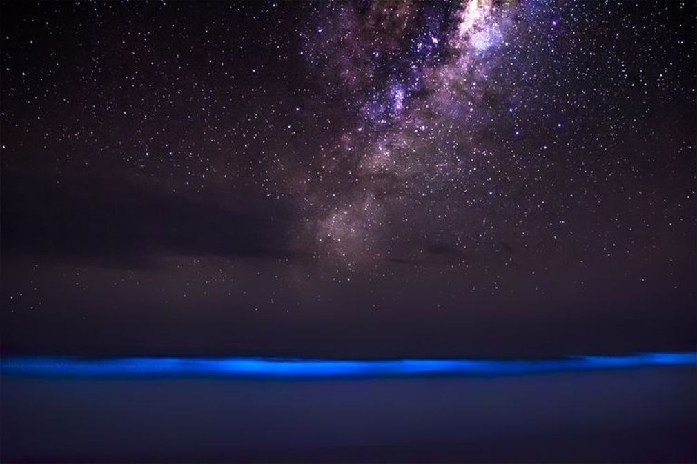 Bioluminescence and Milky Way