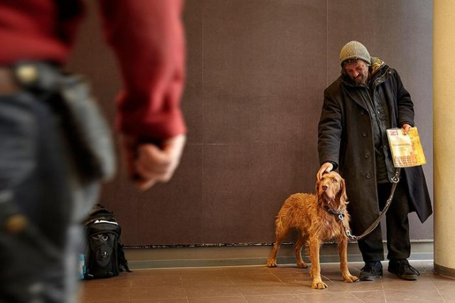 Homeless People and their Dogs (2)