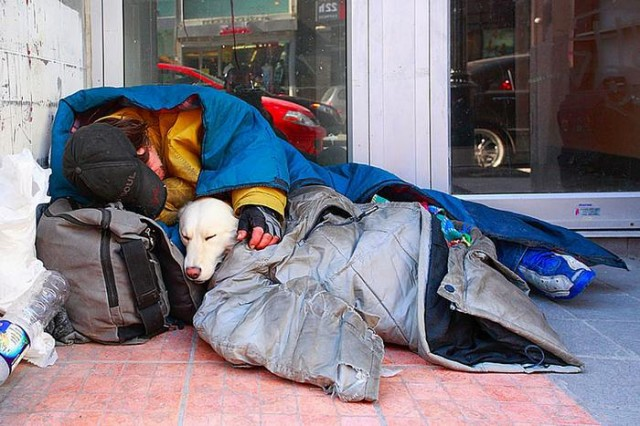 Homeless People and their Dogs (10)