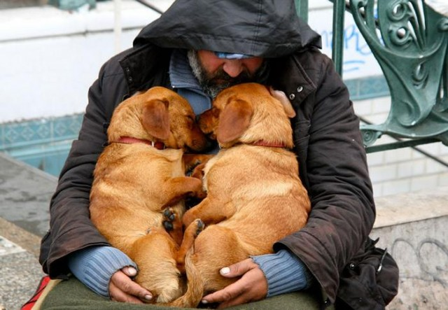 Homeless People and their Dogs (5)