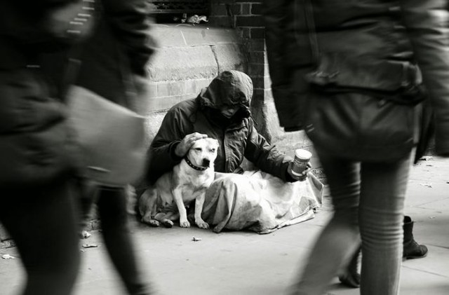 Homeless People and their Dogs (4)