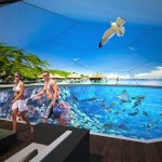 Swimarium virtual reality swimming pool