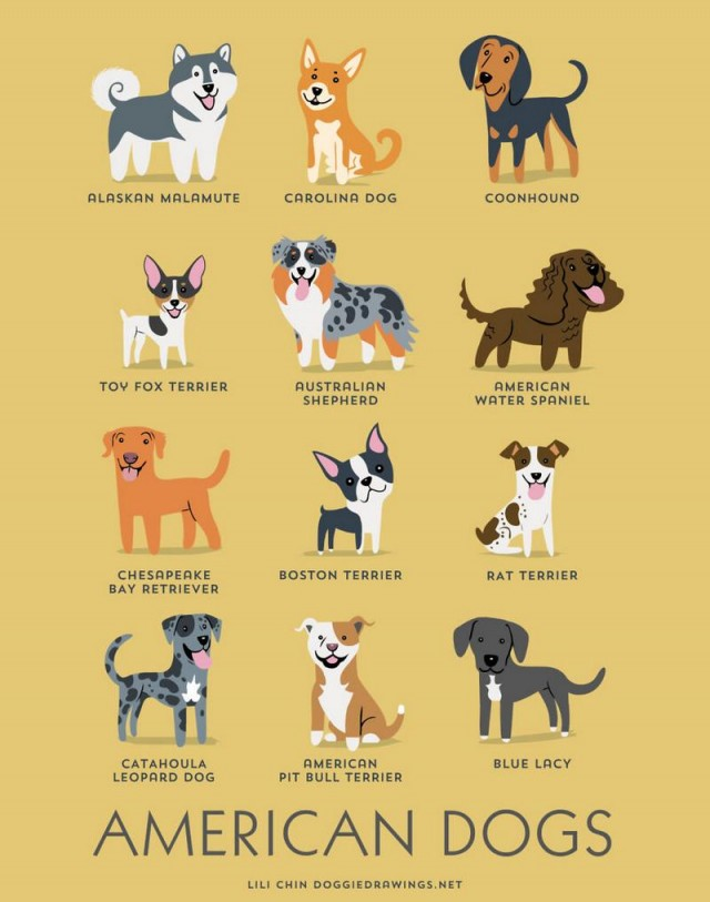 Dogs of the World (9)
