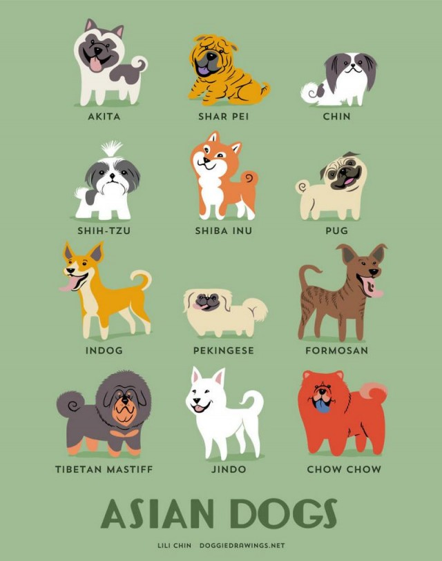 Dogs of the World (8)