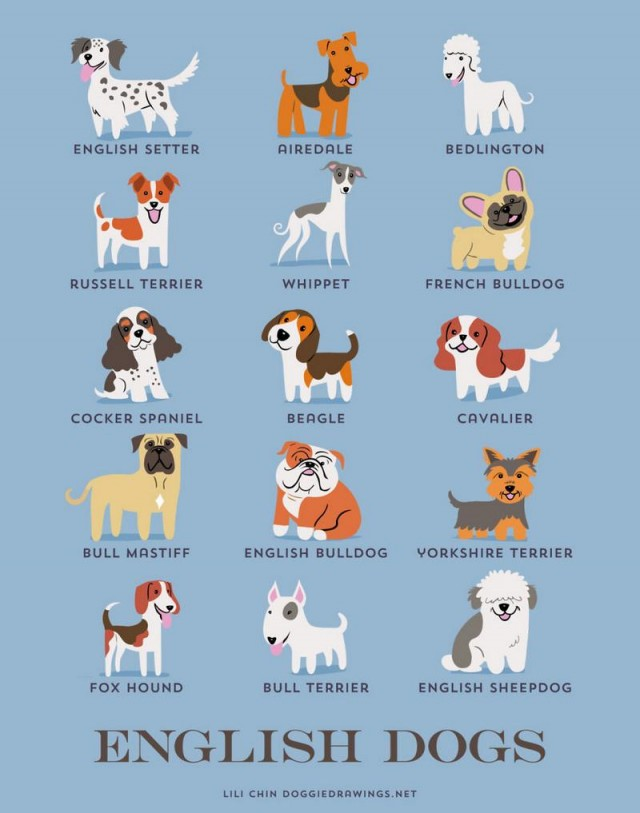 Dogs of the World (7)