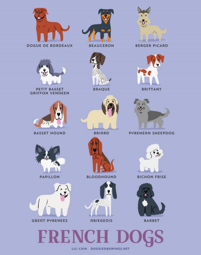 Dogs of the World (6)