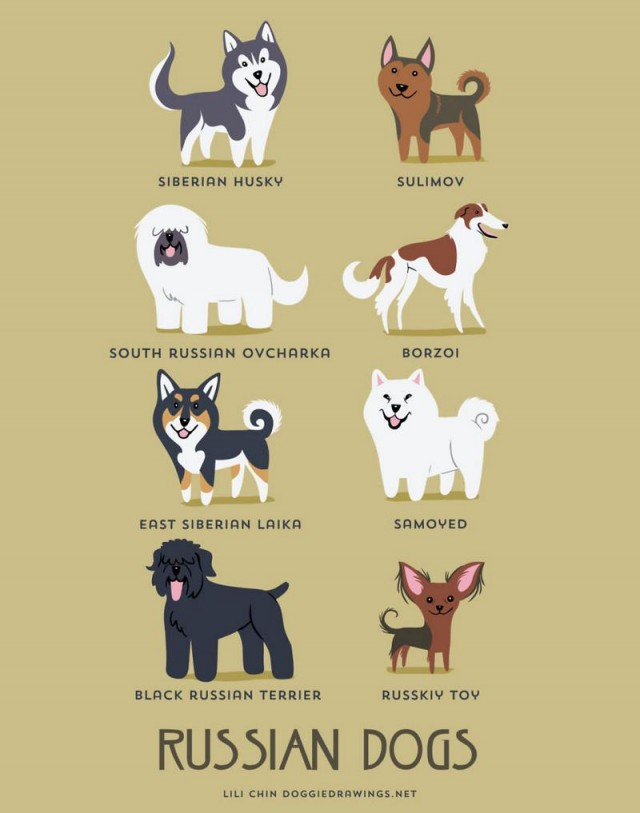 Dogs of the World (4)