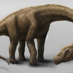 Huge Dinosaur heavier than a Boeing 737 discovered
