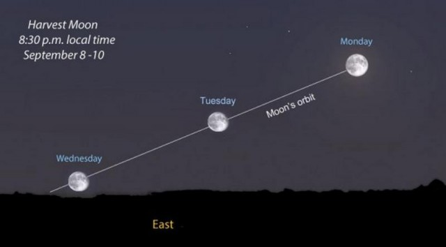 Around the time of Harvest Moon, the full moon's path is tilted at a ...