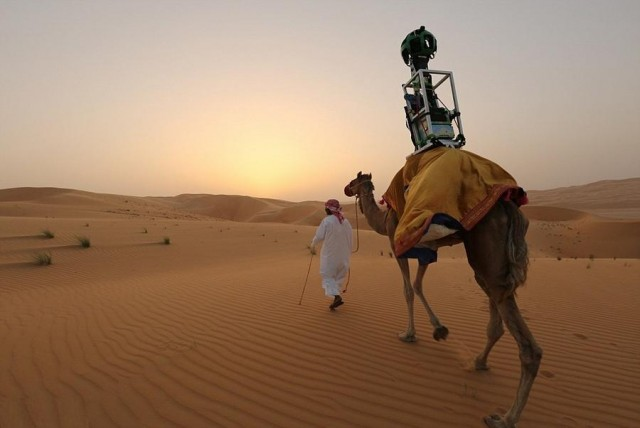 Camels for Street View 2