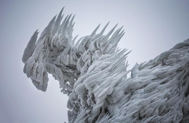Sculptural Ice