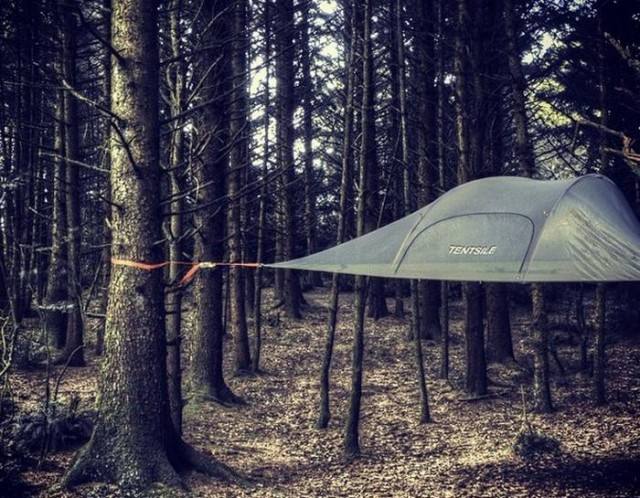 Tentsile Vista tree tent (4)