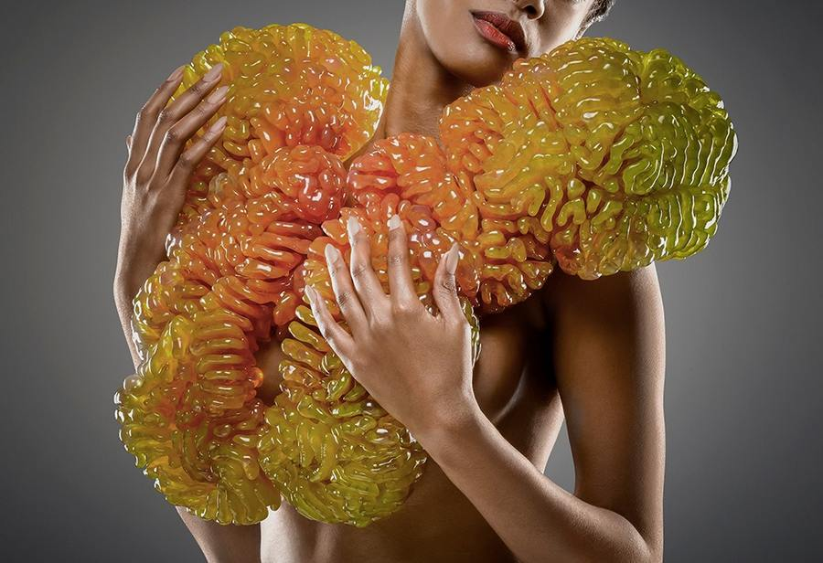 Wearable biospheres (4)