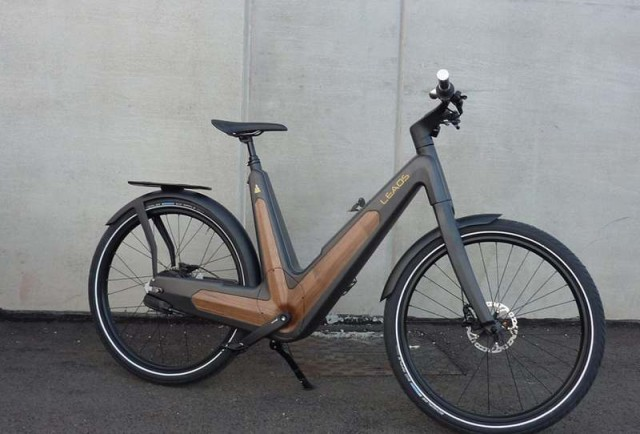 Carbon urban e-bike (1)