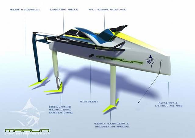 Electric Personal Hydrofoil (1)