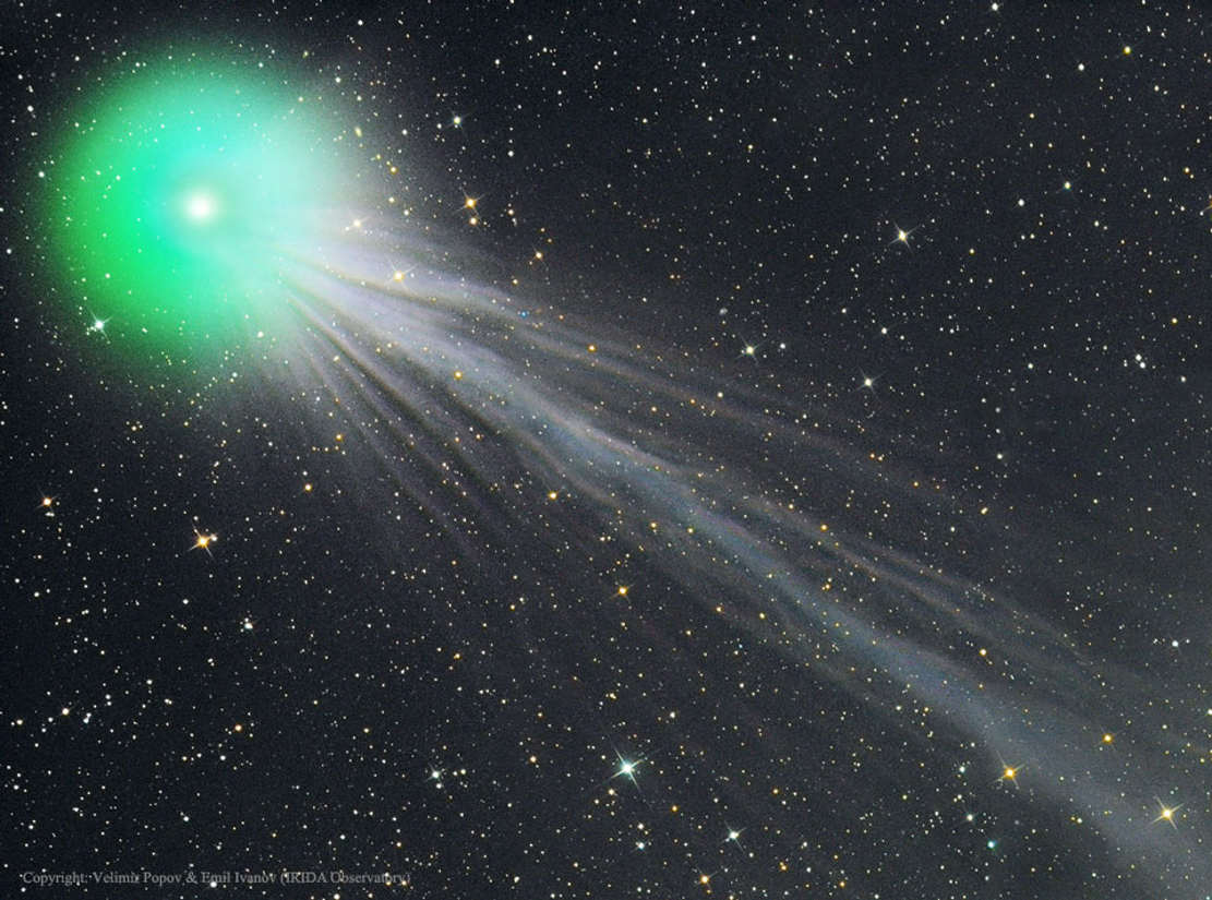 Ion Tail of Comet Lovejoy