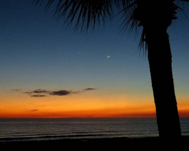 Planet Venus and young moon