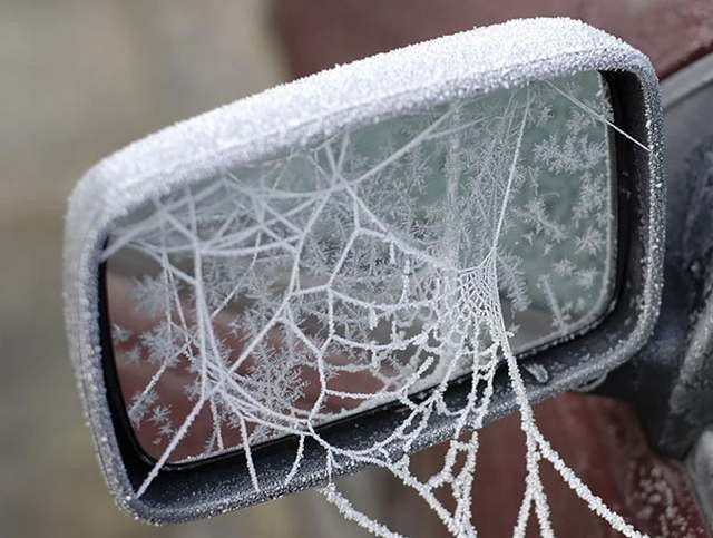 Car decorated by ice (4)