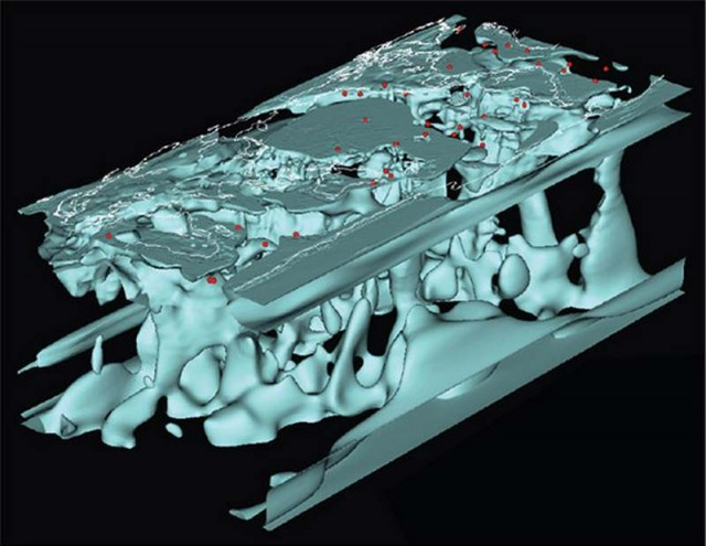 Seismic study, to 3-D map Earth's interior 3