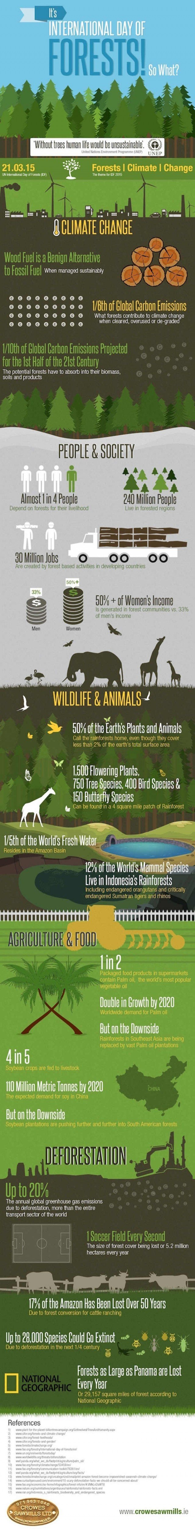 Important Forest facts - infographic