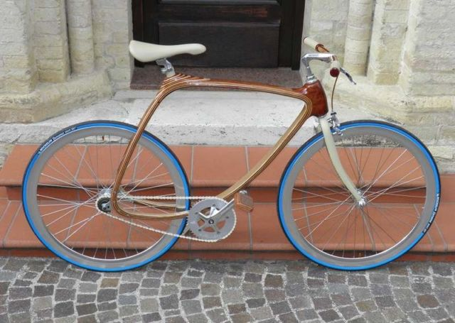 Carbon Wood bike