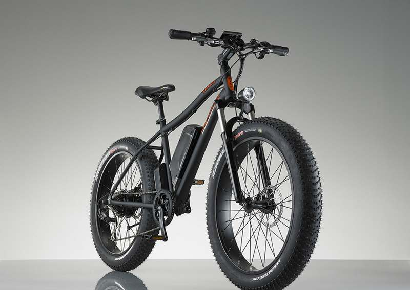 RadRover Electric bike (8)