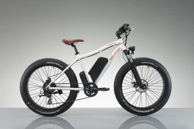RadRover Electric bike (7)