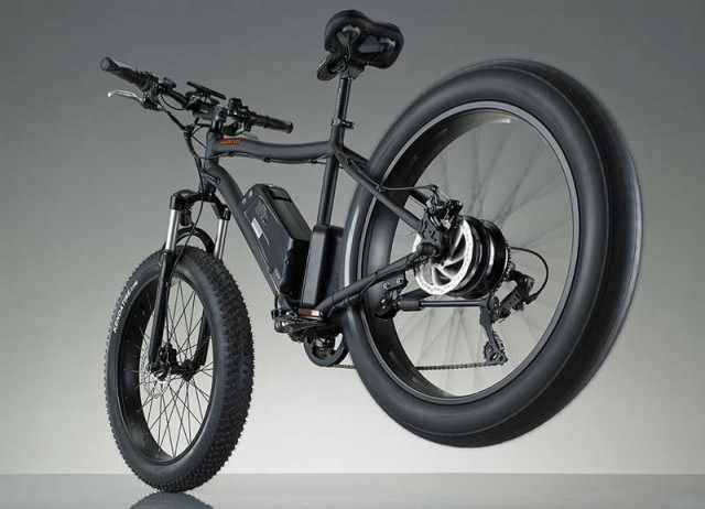 RadRover Electric bike (6)