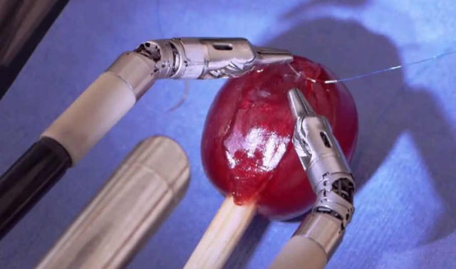 Robot stitches a grape back together