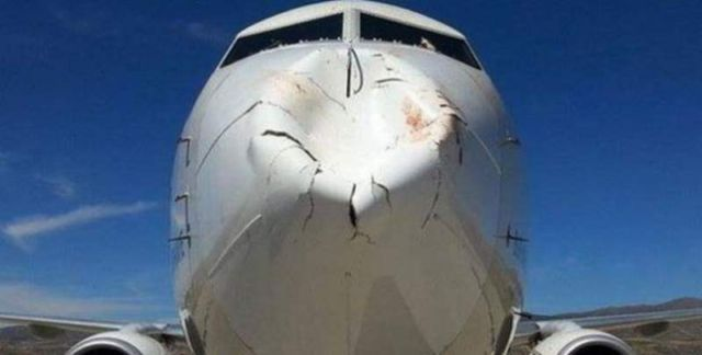 Bird strike to the nose of a Boeing 737