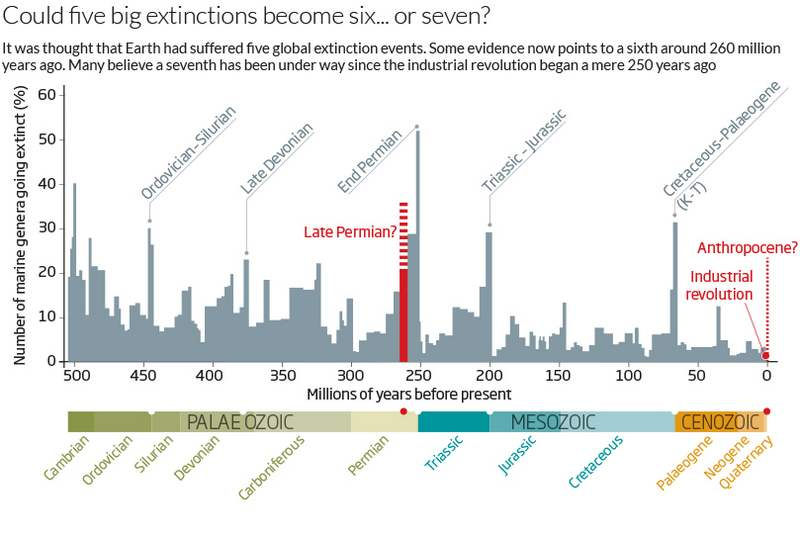 the five mass extinctions Museum dinosaur researcher prof paul barrett has examined the evidence for how five of the most popular dinosaurs lived triceratops.