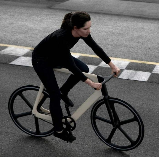 The Arvak Bicycle (7)