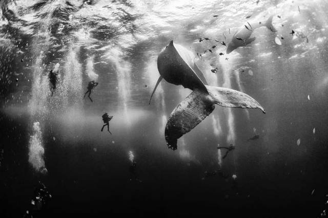 National Geographic Traveler Photo 2015 Contest Winners