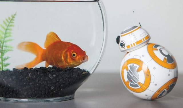 BB-8 new 'Star Wars' toy (4)
