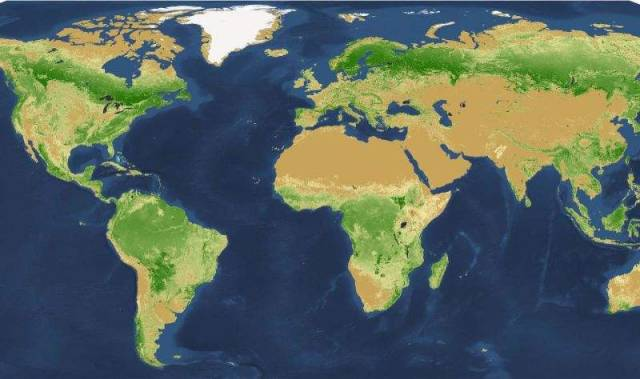 Global map of tree density at the square-kilometer pixel scale