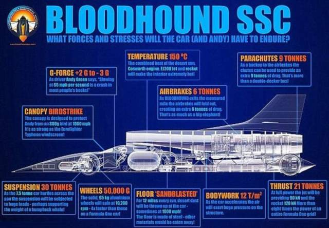 Bloodhound Project (6)