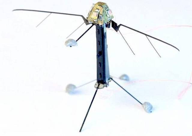 Miniature RoboBee can fly and swim