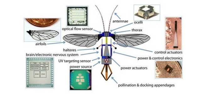 Miniature RoboBee can fly and swim (3)