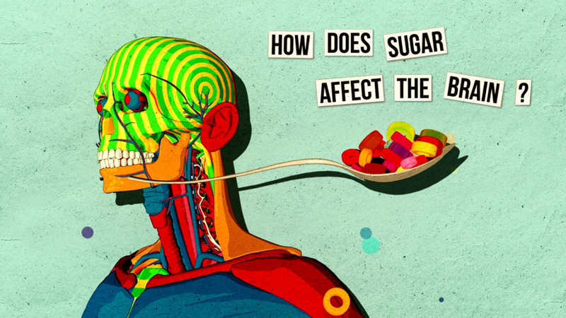 Wordlesstech How Sugar Affects Your Brain