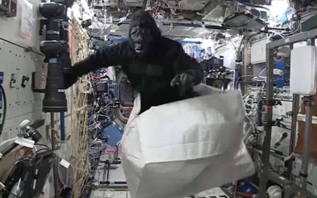 A Gorilla Aboard the Space Station