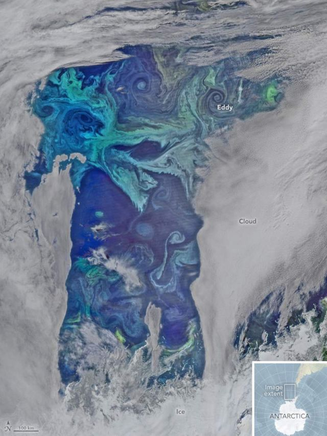 Oxygen Factories in the Southern Ocean