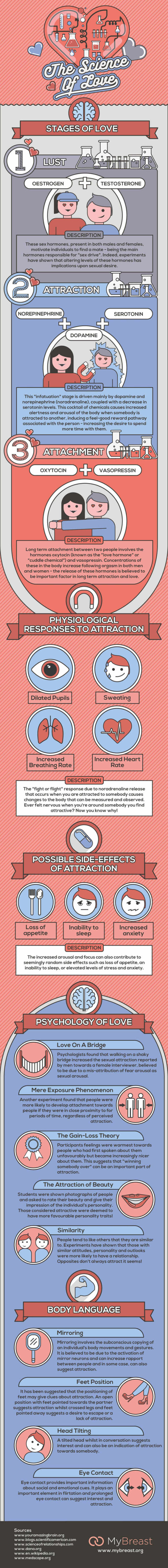 The Science Of Love infographic