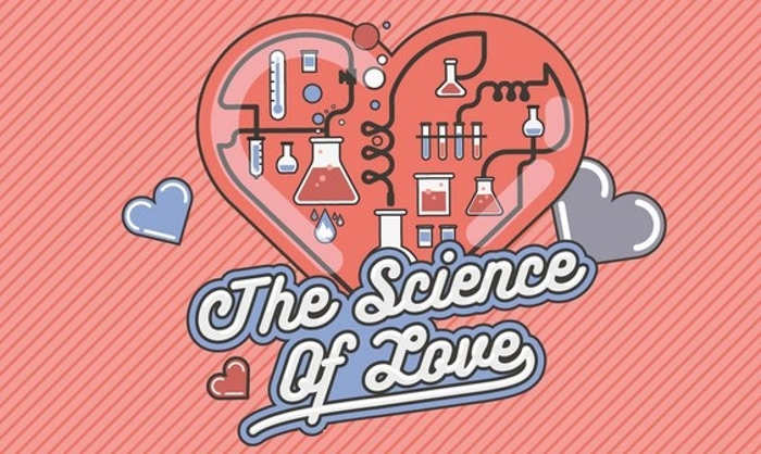 the science of love This plush science of love bouquet has nine little plushes - three erlenmeyer flasks bubbling with little embroidered heart solutions and six molecular structures.