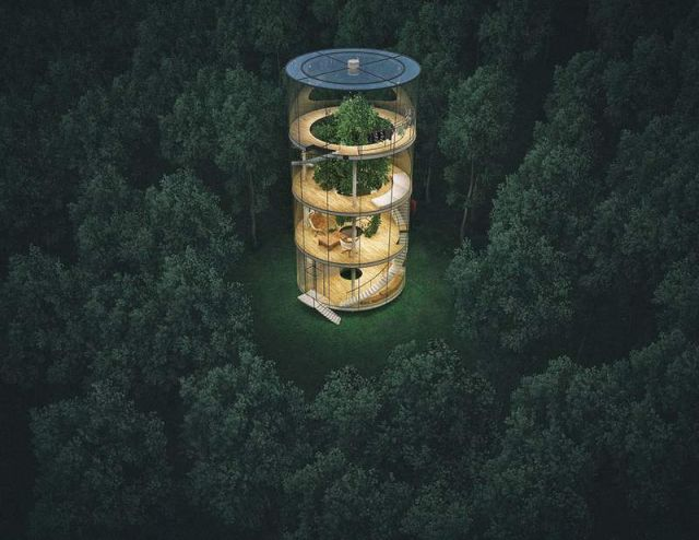 Tubular Glass House built around Tree