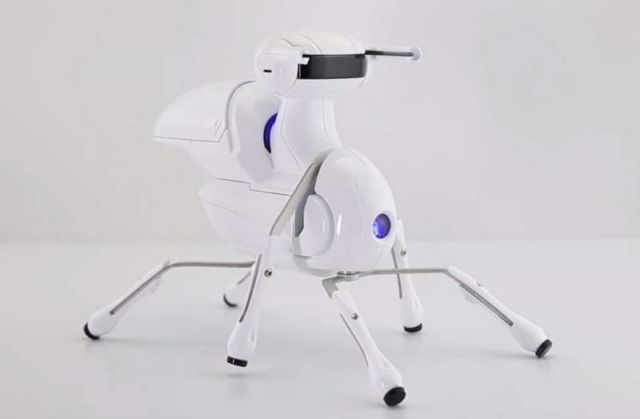 Antbo- an Insect Robot Anyone Can Build