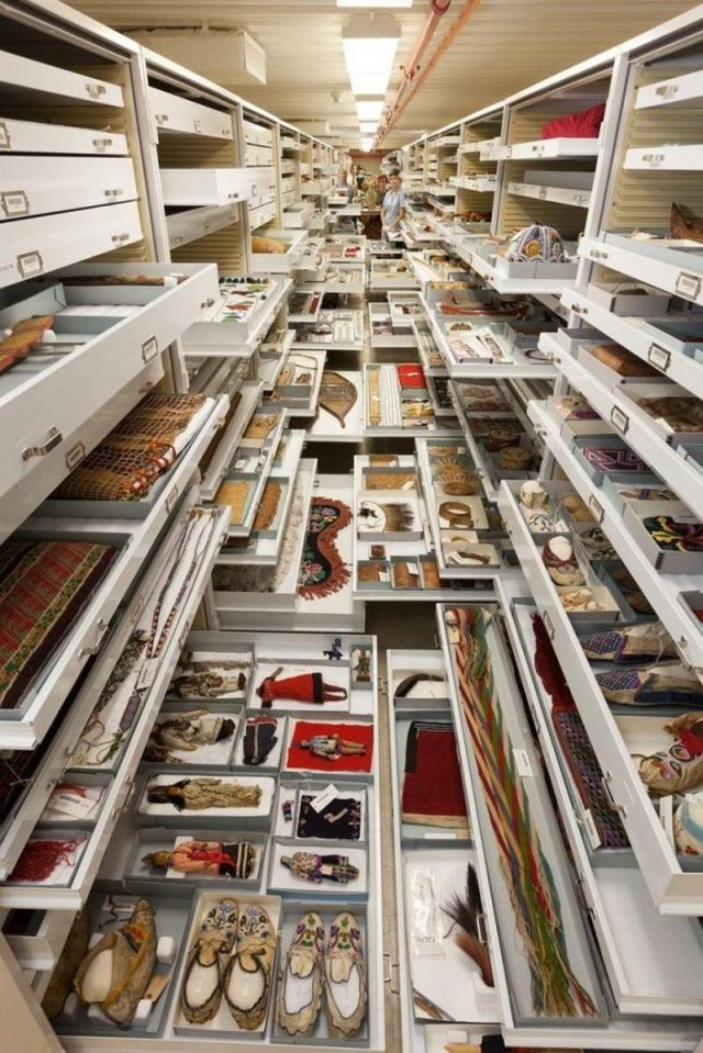 Secret Collections of The National Museum of Natural History (3)